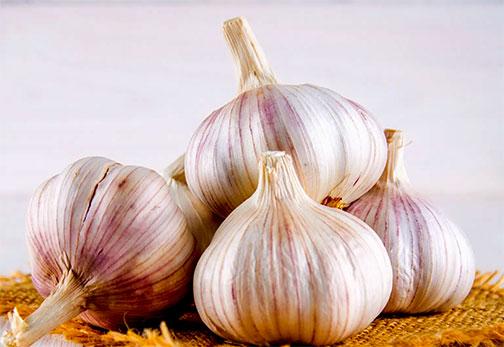 Organic Garlic Cloves (eating)