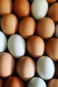 Organic Pastured Eggs