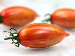 Organic Pink Tiger Tomato Plant
