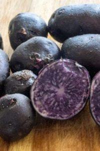 Organic Magic Molly Potato